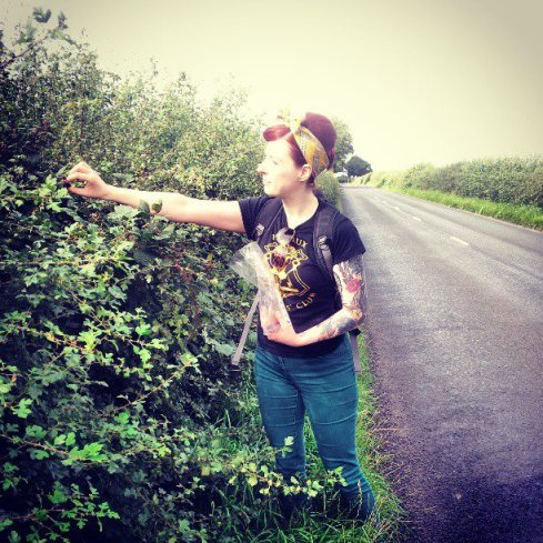 blackberry picking