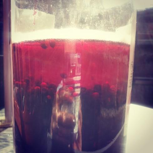 Elderberry gin